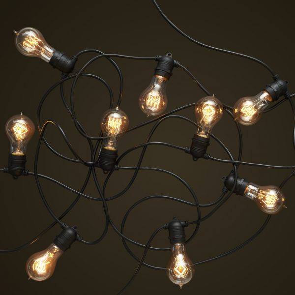 Black Party Festoon Lighting - Round Edison Light Globes